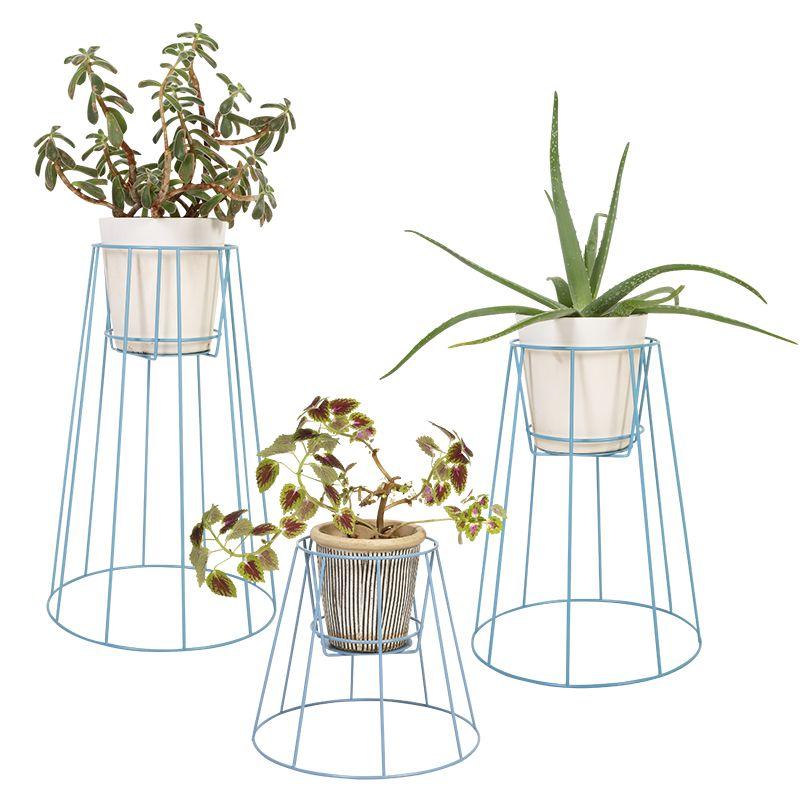 decoration esthétique plantes
